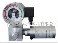 SGZX係列SF6氣體微水密度在線監測係統 SGZX