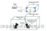 Prizmatix在体光遗传解决方案 IN-VIVO Optogenetics Toolbox
