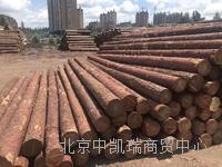 北京杉木杆 2M3M4M6M批发各种规格杉木杆
