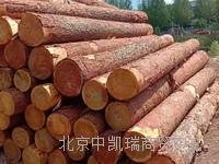 木材批发市场