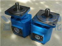 JHP3063,JHP3080,JHP3100,齿轮泵,高压齿轮泵,铸铁齿轮泵
